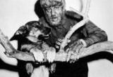 Moose was the dog that played the more traditional werewolf who bit Lawrence Talbot in The Wolf Man. (Meaning Moose was playing Bela Lugosi.) Chaney loved the dog and became his owner. Sadly, Moose died during the production of Universal's […]